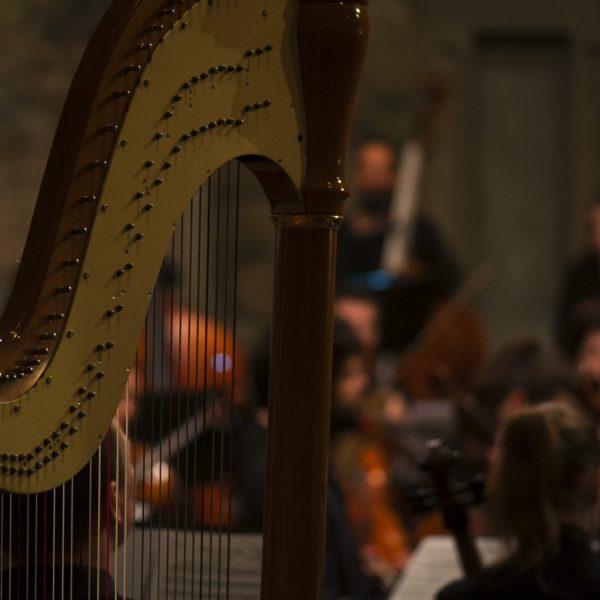 Concert S36 FP2 (20)